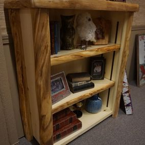 Rustic Log Furniture - Medium Bookcase